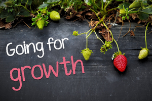 1 Thessalonians: Going for Growth